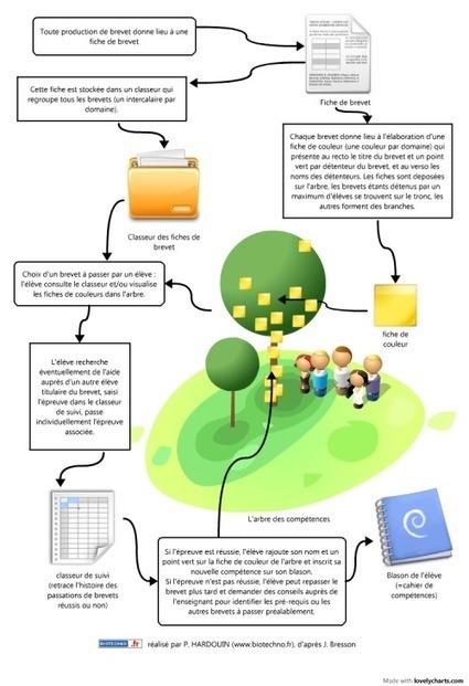 L'arbre des compétences - Biotechno pour les Profs | Lettres-Tice | Scoop.it