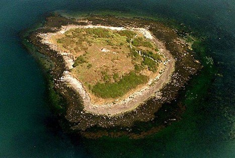 Sur l' île Er Lannic , Arzon | World Neolithic | Scoop.it