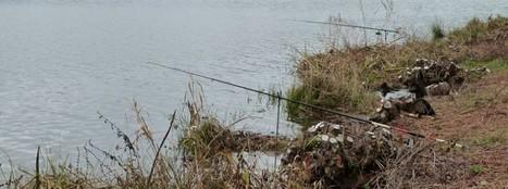 Pêche Puy-de-Dôme | Pêche à l'étang de Tyx | Puy-de-Dôme | Scoop.it