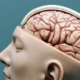 Wiskundeknobbel helpt mee bij creatief denken | (Muziek)onderwijs en onderzoek | Scoop.it