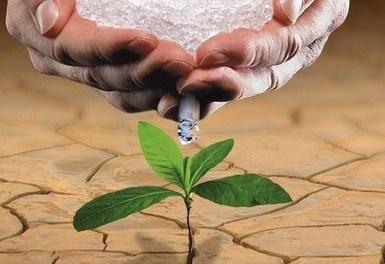 L'eau solide qui pourrait révolutionner l'agriculture mondiale | ParadigmS ShiftS | Scoop.it