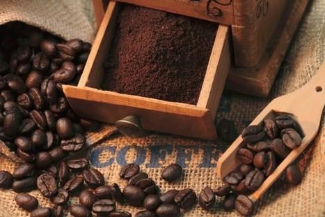 Riuso fondi caffè per la cura delle piante e dell'orto - Non sprecare | Italica | Scoop.it