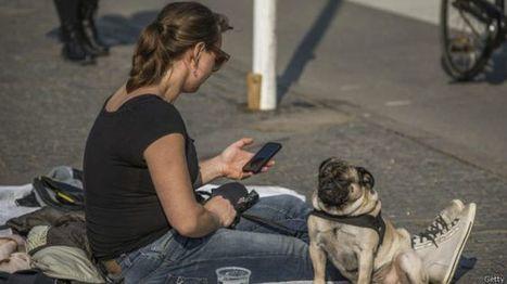 5 aplicaciones para aprender idiomas con tu celular | El rincón de mferna | Scoop.it