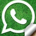 WhatsApp Might Be A Trouble For Parents!   WhatsApp Spy   Scoop.it