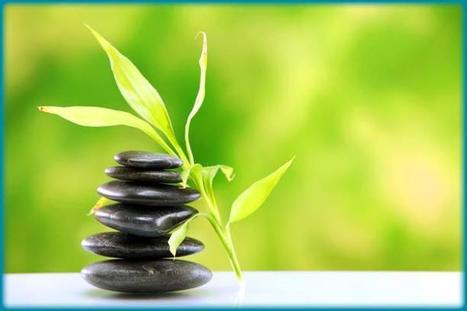 Living a Natural Lifestyle in an Allopathic World   Holistic & Alternative Health   Scoop.it