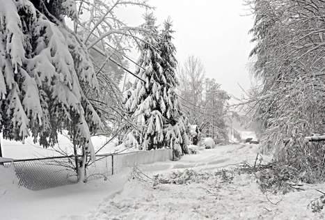 Tim Bobrowski: Let it snow; we won't miss school   BroadbandPolicy   Scoop.it
