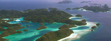 Coral Triangle Initiative - Conservation International | Coral Conservation | Scoop.it
