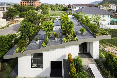 Toit végétalisé | Arkitektura xehetasunak | Scoop.it