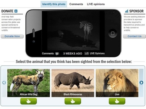 Poachers caught red-handed by the Raspberry Pi | Raspberry Pi | Scoop.it