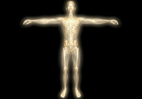 Cinco partes del cuerpo humano que no sirven para nada - Ojo Cientifico | desdeelpasillo | Scoop.it