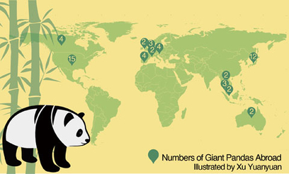 China Saves the Giant Panda — For Now | Sustain Our Earth | Scoop.it