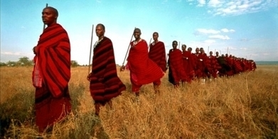 Land Grab Could Spell the End of the Massai and the Serengeti - VIDEO | Biodiversity IS Life  – #Conservation #Ecosystems #Wildlife #Rivers #Forests #Environment | Scoop.it
