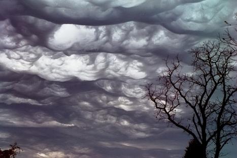 Découvrez la confrérie des chasseurs de #nuages sur @franceculture | CULTURE, HUMANITÉS ET INNOVATION | Scoop.it