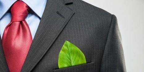 Il Piano della UE per PMI e Lavoro Green - PMI.it | Giovani e Innovatori | Scoop.it