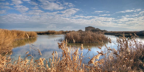 The Sentina Reserve, out of this world in Le Marche | Le Marche another Italy | Scoop.it