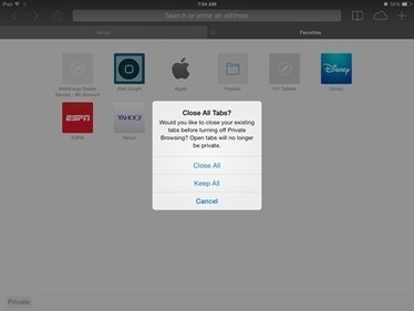 How To: Use Private Browsing on the iPad | iPad Insight | iPads in Education | Scoop.it