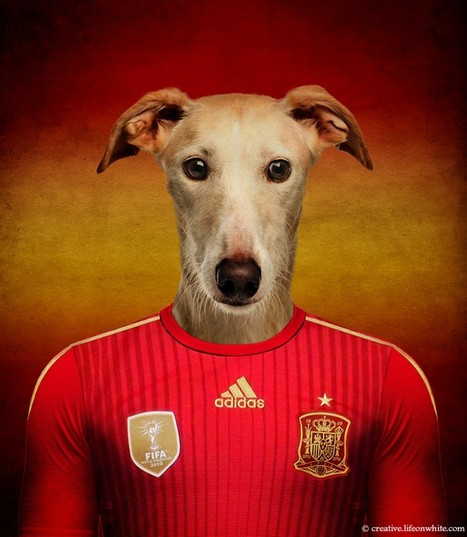 Soccer Nations Dogs | Skill Type | Life on White Creative | Perros, gatos y demás fauna | Scoop.it