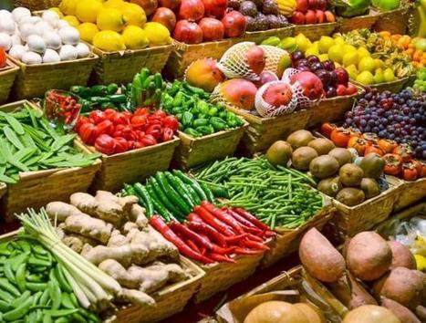 Rusia prohibe definitivamente los alimentos transgénicos | Bioderecho y Ciencias Jurídicas | Scoop.it