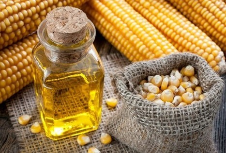 Corn Oil Better At Reducing Cholesterol - Health News - redOrbit | Nature Anti-Agers | Scoop.it