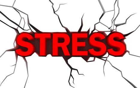 Fertilité masculine : attention au stress - Ferloo | Stress | Scoop.it