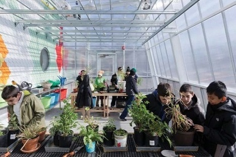 Edible Schoolyard for Brooklyn PS216 by WORKac | This Gives Me Hope | Scoop.it