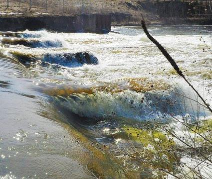 Dam removals: Both unused Otsego-area dams continue to be on DNR's target list - Allegan County News | Fish Habitat | Scoop.it