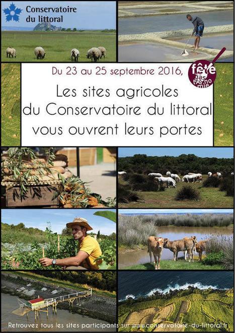 Saveurs et senteurs littorales | Zones Humides | Fête de la Gastronomie 23 au 25 sept. 2016 | Scoop.it