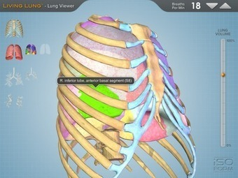 Living Lung - A 3D Interactive Model of the Lungs | iGeneration - 21st Century Education | Scoop.it