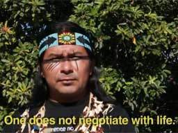 Amazon Watch - Defend Indigenous People and the Amazon | Preservation of Indigenous Ethnobotanical Practice | Scoop.it