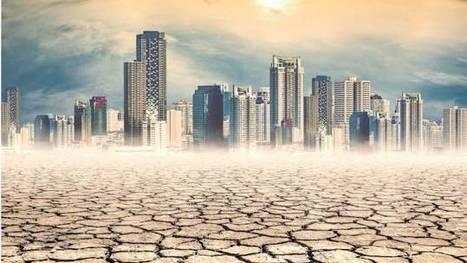 Météo et Climat : un forum pour comprendre la différence | Planete DDurable | Scoop.it