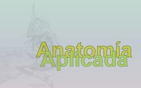 Anatomía Aplicada de 1º de Bachillerato | Biología Bachillerato | Scoop.it