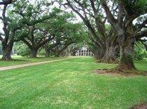 San Diego Reader | Oak Alley Plantation, Louisiana | Oak Alley Plantation: Things to see! | Scoop.it