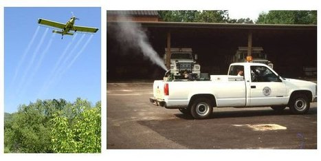 Mosquito Control Methods | Mosquito Control in Roswell | Scoop.it