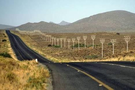 Eastern Cape Safaris   Hotels Garden Route   Scoop.it