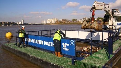 Plastic in fish highlights need for cleaner Thames - BBC News | smart agriculture | Scoop.it
