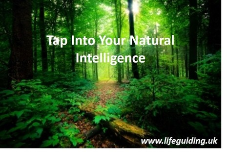 Why Your Brain Needs Nature! | Ian Banyard | The MINDsight Coach | Scoop.it
