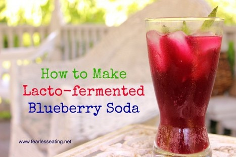 How to Make Lacto-fermented Blueberry Soda | Fearless Eating | The Basic Life | Scoop.it
