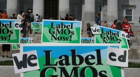 États-Unis : le Vermont fait un appel aux dons pour défendre sa loi sur l'étiquetage des OGM | Questions de développement ... | Scoop.it