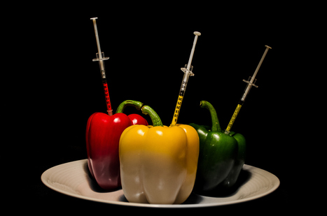 GMO Labeling is Bad Science and Good Politics | Information Cascade | Scoop.it