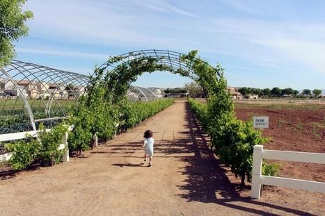 Agrihood Communities Redefining 'Homegrown' Food | sustainablity | Scoop.it