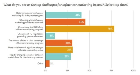 Influencer Marketing Hit the Mainstream in 2016 (Report) | MarketingHits | Scoop.it
