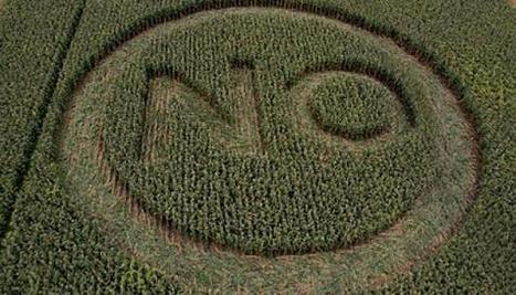 OGM: la France du non contre l'Europe du oui - myEurop.info | Kilométrage alimentaire | Scoop.it