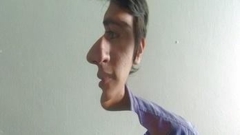 Half-Faced Illusions Are Twisting My Brain | Gizmodo Australia | The brain and illusions | Scoop.it