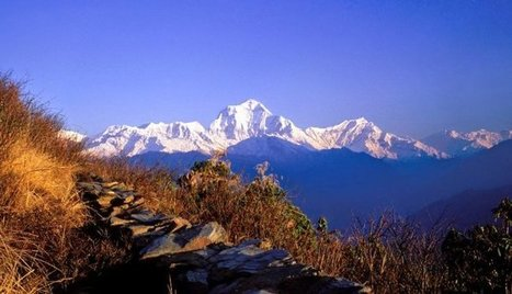 Unbelievable experince in Nepal   Bungee Jump In Nepal   Scoop.it