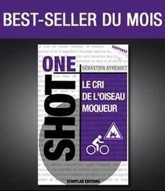 Storylab, maison d'édition 100% numérique   Brèves de bibliothèque(S)   Scoop.it