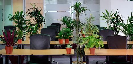 Construisez-vous une pépinière de clients grâce au | Délégation régionale Sud-Est 2i Portage | Scoop.it