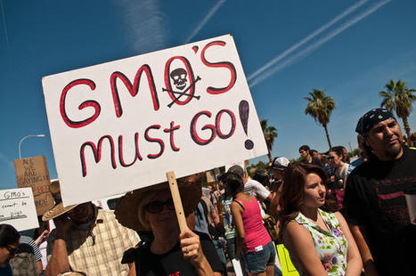 Environmentalists' double standards | COSMOS | Feeding the Future | Scoop.it