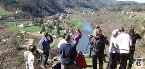 Haute-Loire : douze rendez-vous nature en août - mon43 | Le Tourisme en Haute-Loire | Scoop.it
