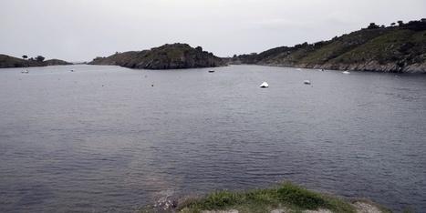 La Red Natura 2000 cumple hoy 23 años | Agua | Scoop.it