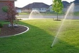 Sprinkler repair Tampa helps to keep your lawn healthy and beautiful | Landscaping | Scoop.it